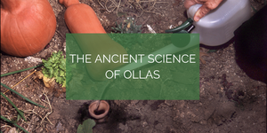 The Ancient Science of Ollas (for the science geeks)