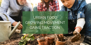 Urban food growing movement gains traction!
