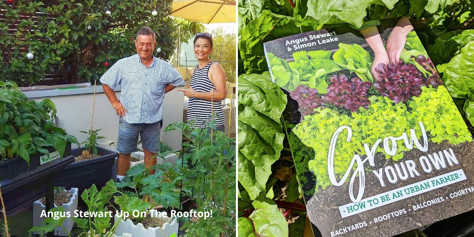 Grow Your OWn Food book
