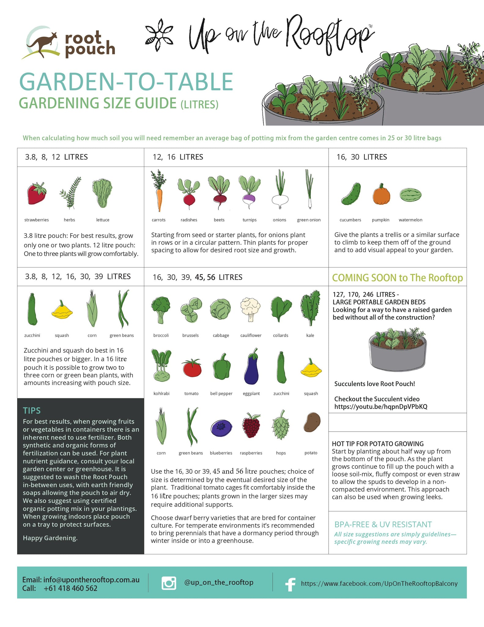Size Guide for planters