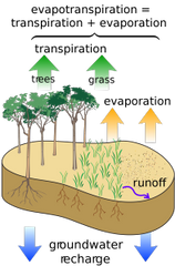 Transpiration, Evaporation, water run-off