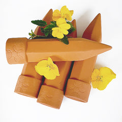 Terracotta water spikes for watering pot plants