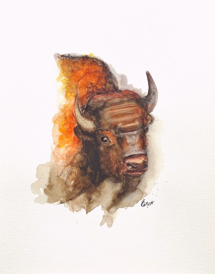 Bison, Buffalo, Watercolor, Aquarelle, Totem, Animal,