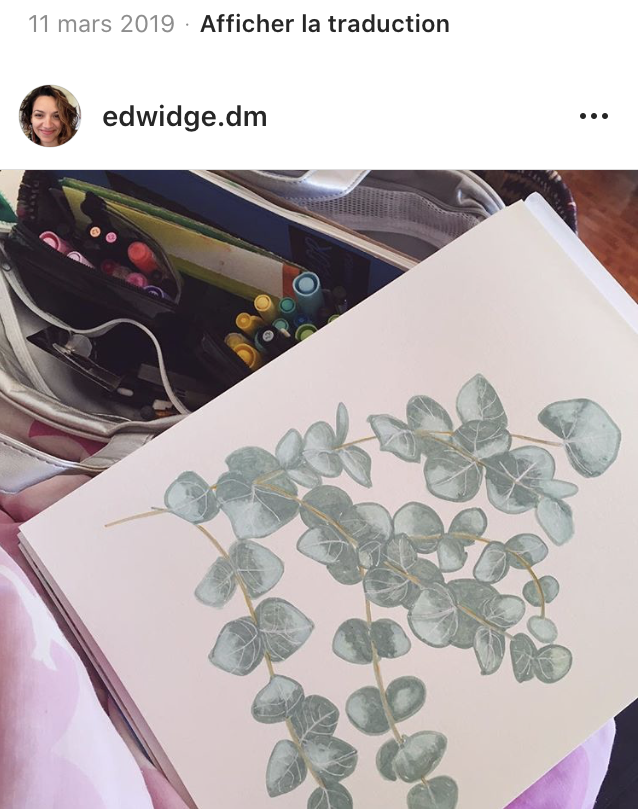 Eucalyptus branch, Sweet branch of eucalyptus, watercolor, aquarelle
