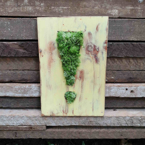 This Moss Be Art (exclamation point)