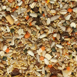 Tidymix High Quality Parakeet Seed Blend Food 2.3kg
