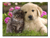 Cute Puppy & Kitten - 1 panel L
