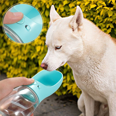 Doggy Bottle - Royalty Express Hub