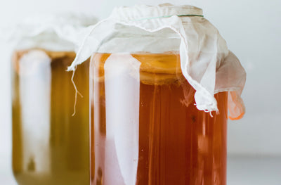 Kombucha vs. Aged Kombucha: What's the Difference?