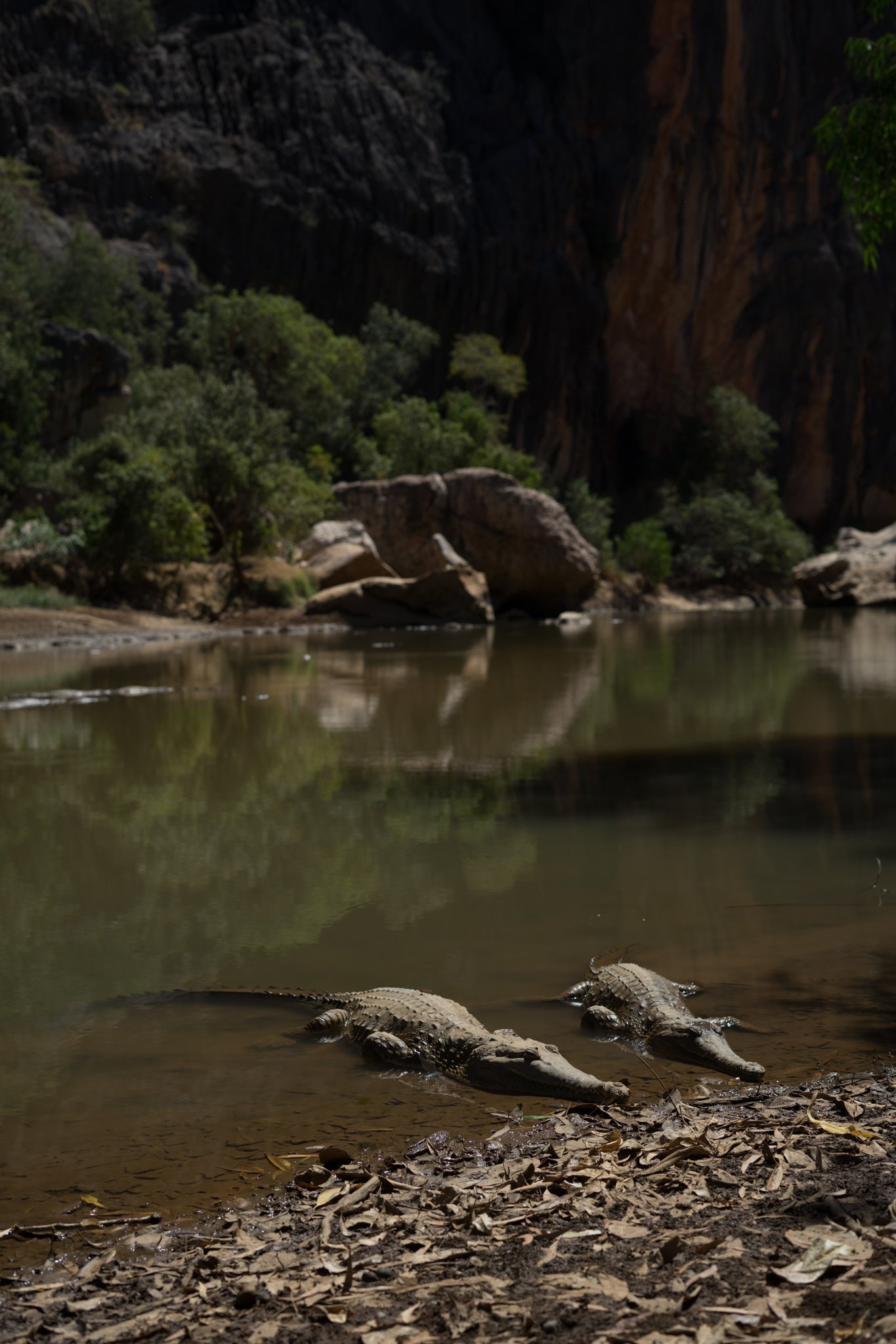 el questro gorge, el questro, tunnel creek, gibb river road, the kimberleys, kimberleys
