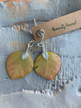 Load image into Gallery viewer, Aspen Sterling Silver Earrings
