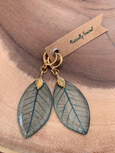 Load image into Gallery viewer, Turquoise Skeleton Leaf Gold Earrings
