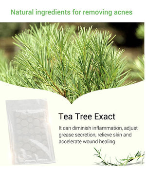Perfect Tea Tree Skn Tagg Patch 36pcs