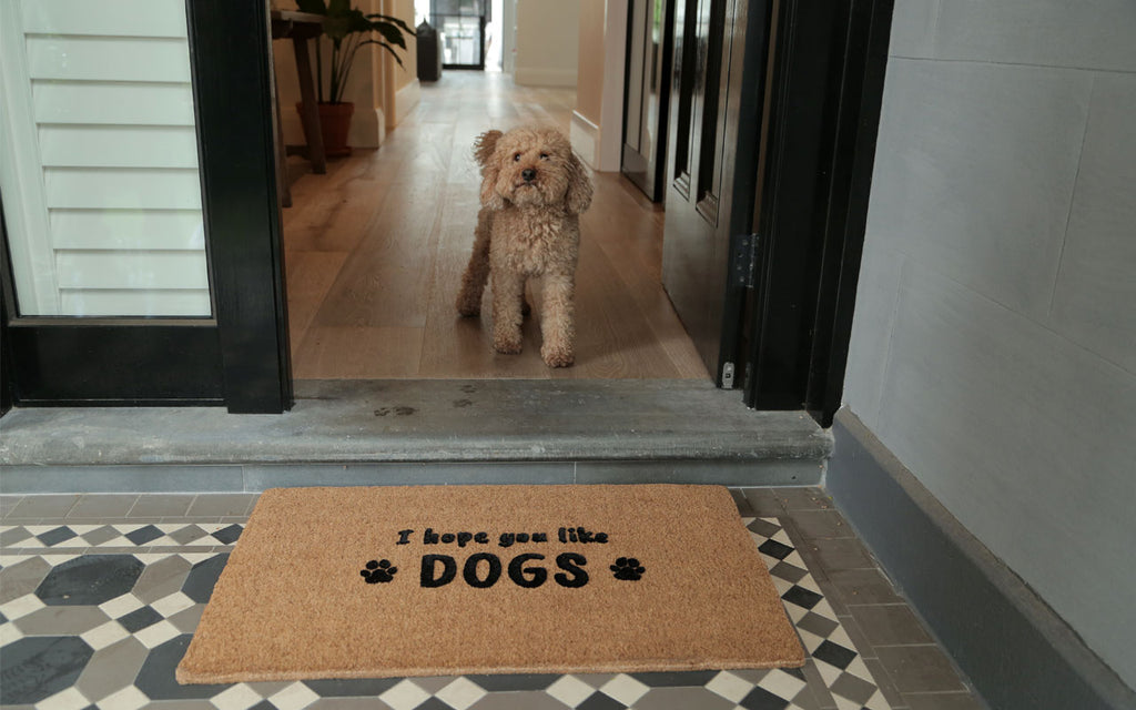 Like Dogs Large Doormat
