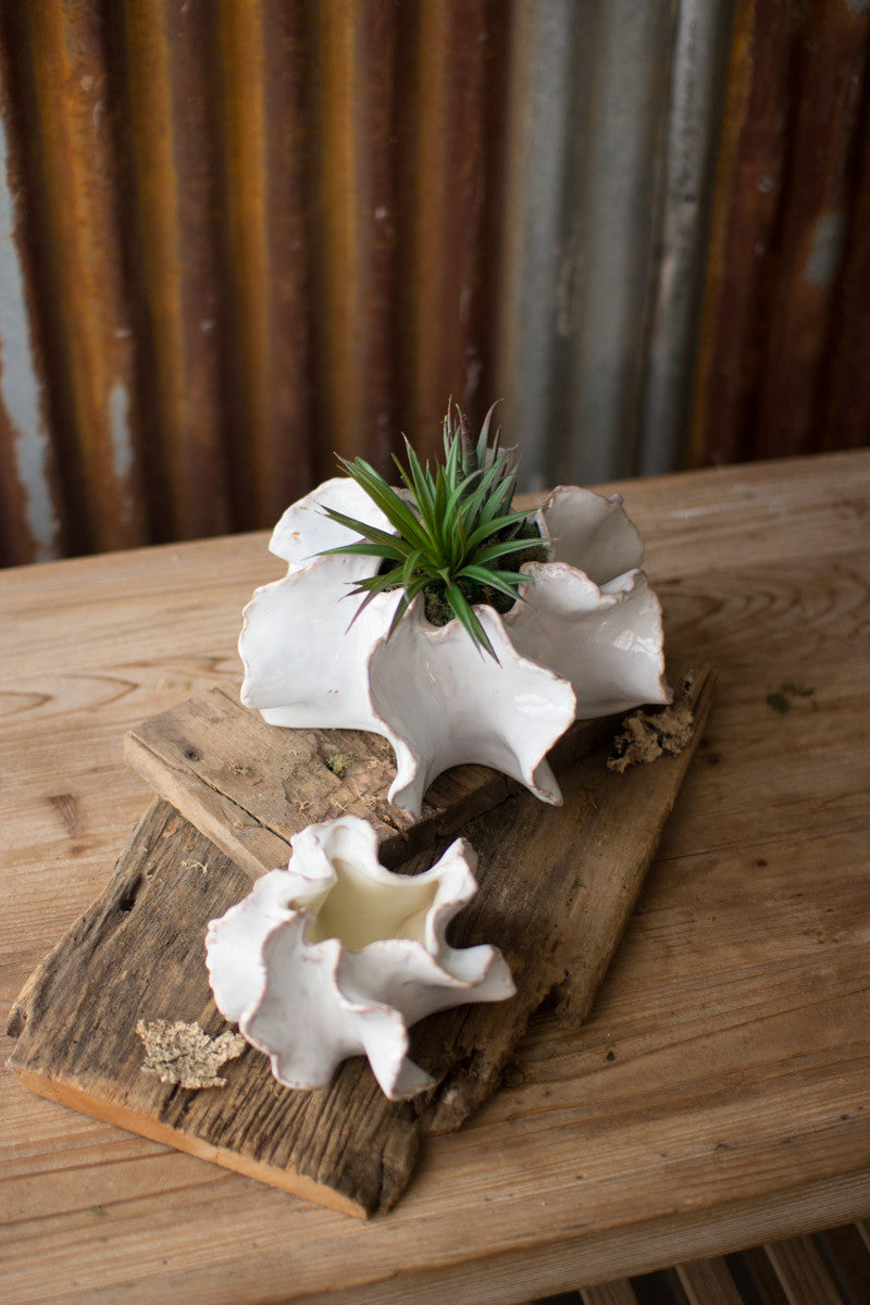 Mini Ceramic Ruffle Planters