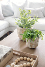 Rivergrass Planter
