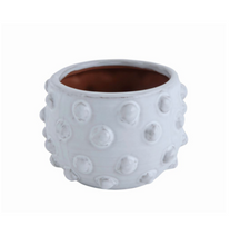 Terra-Cotta White Dots Planter, Medium