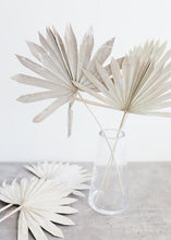 Whitewashed Natural Palm Bunch