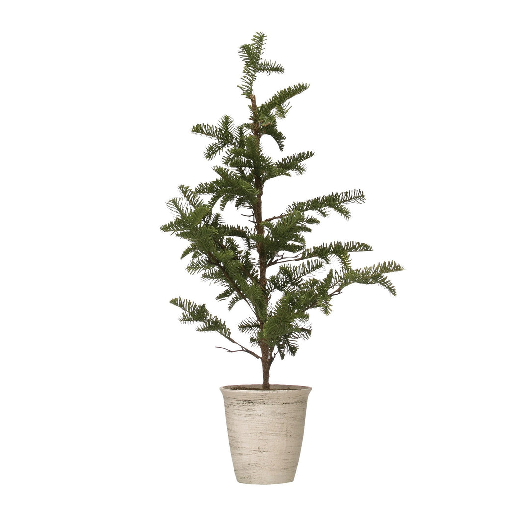 Pine Tree in White Wash Pot