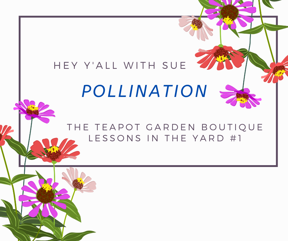 Hey Y'all with Sue - Pollination