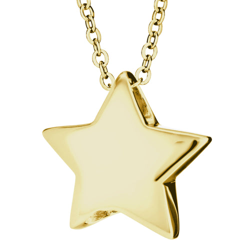 EverWith  Star Memorial Ashes Pendant