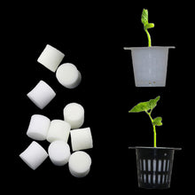 Load image into Gallery viewer, Soilless Hydroponic Vegetables Nursery Pots Nursery Sponge Flower Seed Cultivation Soilless Cultivation System Seed Trays