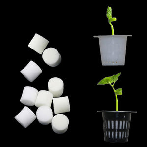 Soilless Hydroponic Vegetables Nursery Pots Nursery Sponge Flower Seed Cultivation Soilless Cultivation System Seed Trays