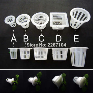 10pcs White Mesh Pot Net Cup Basket Hydroponic Aeroponic System Plant Grow Organic Green Vegetable Clone Cloning Seed Germinate