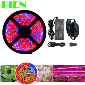 Plant Grow lights Full Spectrum LED Strip Flower phyto lamp 5m Dimmable Red blue 4:1 for Greenhouse Hydroponic + Power adapter