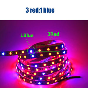Plant Grow lights Full Spectrum LED Strip Flower phyto lamp 5m Waterproof Red blue 4:1 for Greenhouse Hydroponic+Power adapter