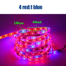 Load image into Gallery viewer, Plant Grow lights Full Spectrum LED Strip Flower phyto lamp 5m Waterproof Red blue 4:1 for Greenhouse Hydroponic+Power adapter