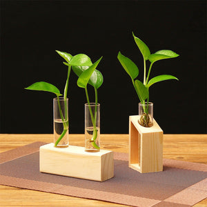 2018 New Creative Hydroponic Plant Transparent Vase Wooden Frame Coffee Shop Room Decor #NE820