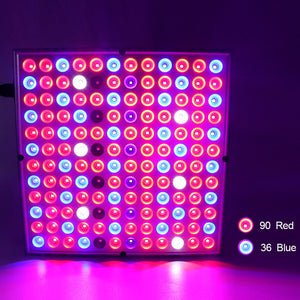 Square  Full Spectrum LED Light