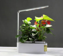 Load image into Gallery viewer, Smart Herb Garden Kit