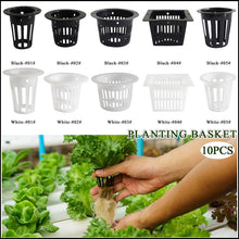 Load image into Gallery viewer, 10pcs Heavy Duty Hydroponic Mesh Pot Net Cup Basket Hydroponic Aeroponic Plant Grow Garden Clone