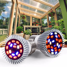 Load image into Gallery viewer, E27 LED Grow Light 220V Indoor Greenhouse fitolamp E14 Led Light Bulbs For Plant Growth 18 28leds Hydroponics Bulbs Flower Lamp