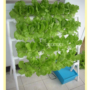 Home Balcony Pipeline Hydroponic Planting Rack Single-sided Ladder Type Soilless Vegetable Cultivation Equipment 110V/220V 10W