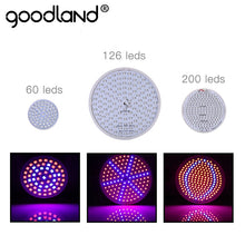 Load image into Gallery viewer, Goodland LED Grow Light Full Spectrum Phyto Lamp E27 Plant Lamp For Indoor Greenhouse Hydroponic Seedlings Flower Fitolamp