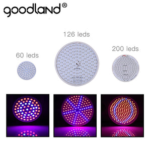 Goodland LED Grow Light Full Spectrum Phyto Lamp E27 Plant Lamp For Indoor Greenhouse Hydroponic Seedlings Flower Fitolamp