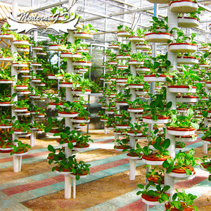 China factory Easy installed low cost plastic Greenhouse Hydroponic planter for vegetables