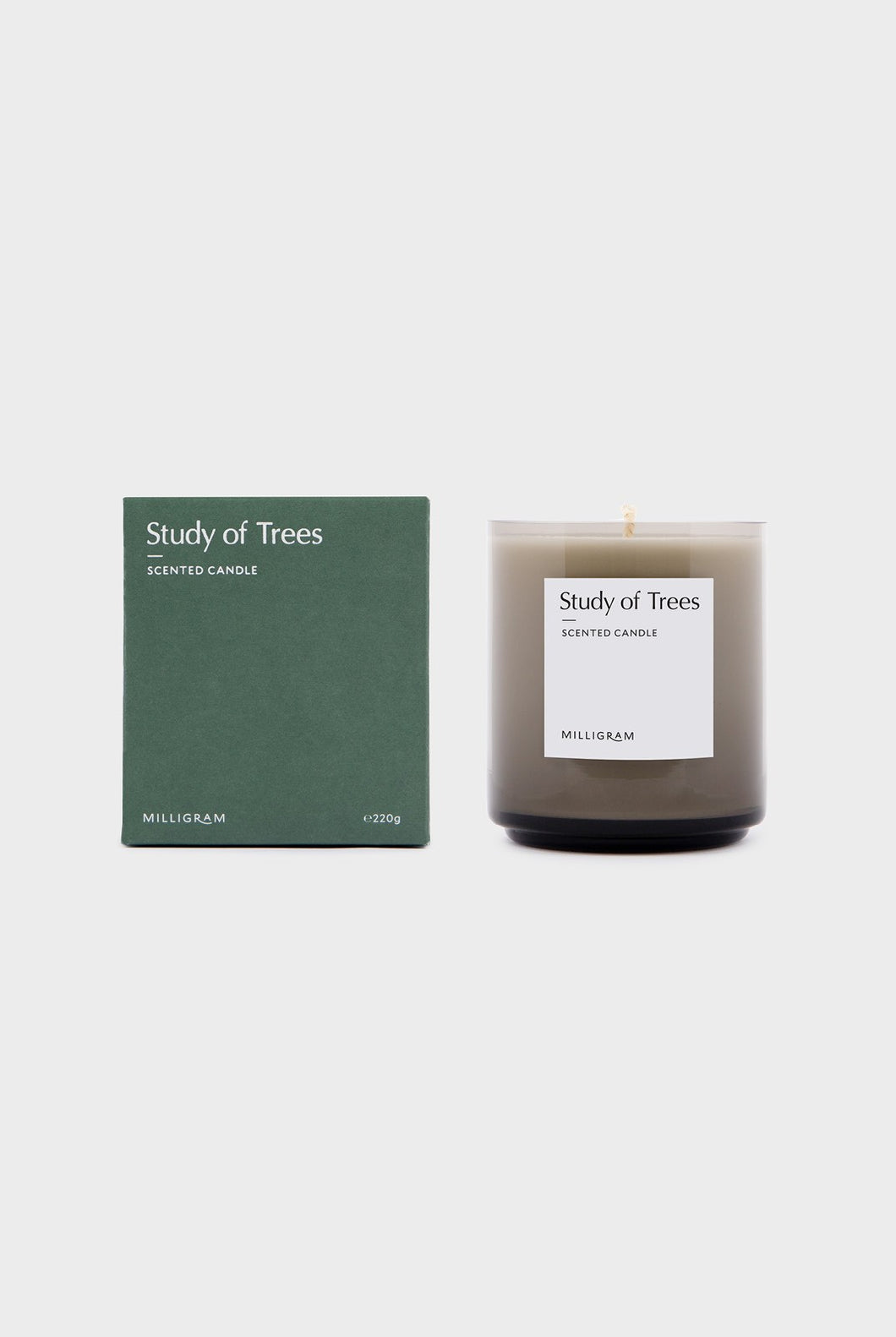 Study of Trees Candle - 220g
