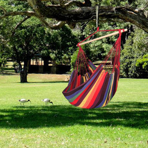 Large Hammock Chair - Polly Tadpole