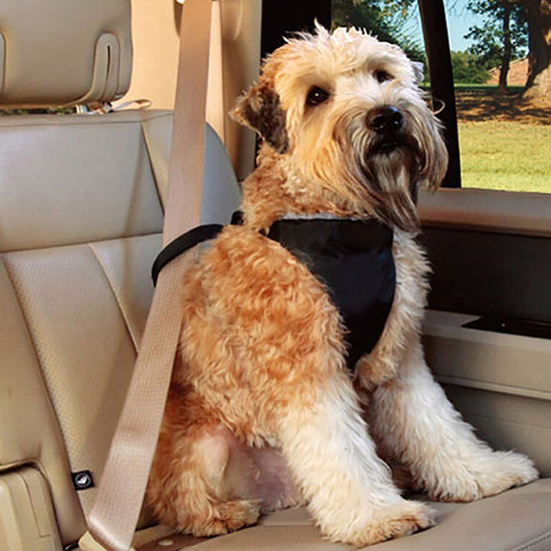 Universal Car Dog Harness Leash Nylon Pet Safety Chest Strap Vest Seat Belt