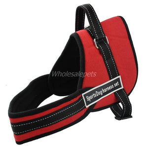 Multipurpose Nylon No Pulling Dog Training Harness
