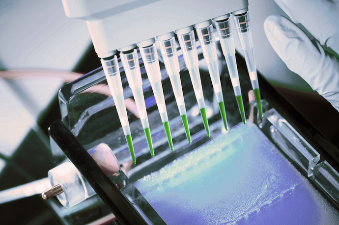 How to Recover More DNA from Agarose Gels