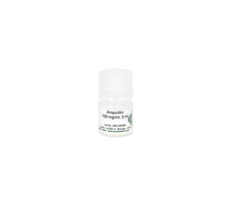 Ampicillin Sodium Solution