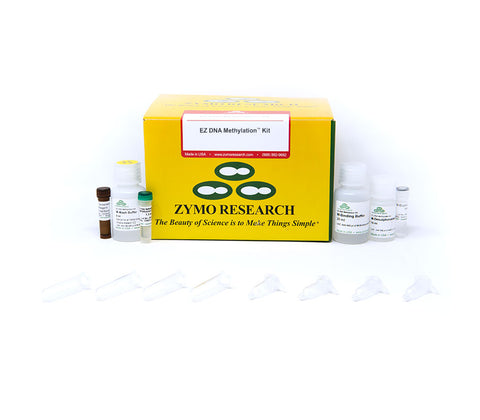 EZ DNA Methylation kit