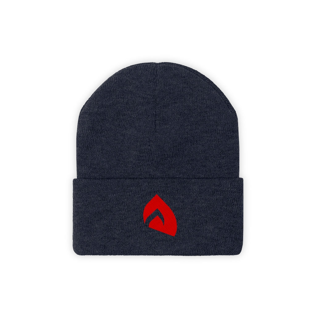 t-int EMBROIDERED BEANIE