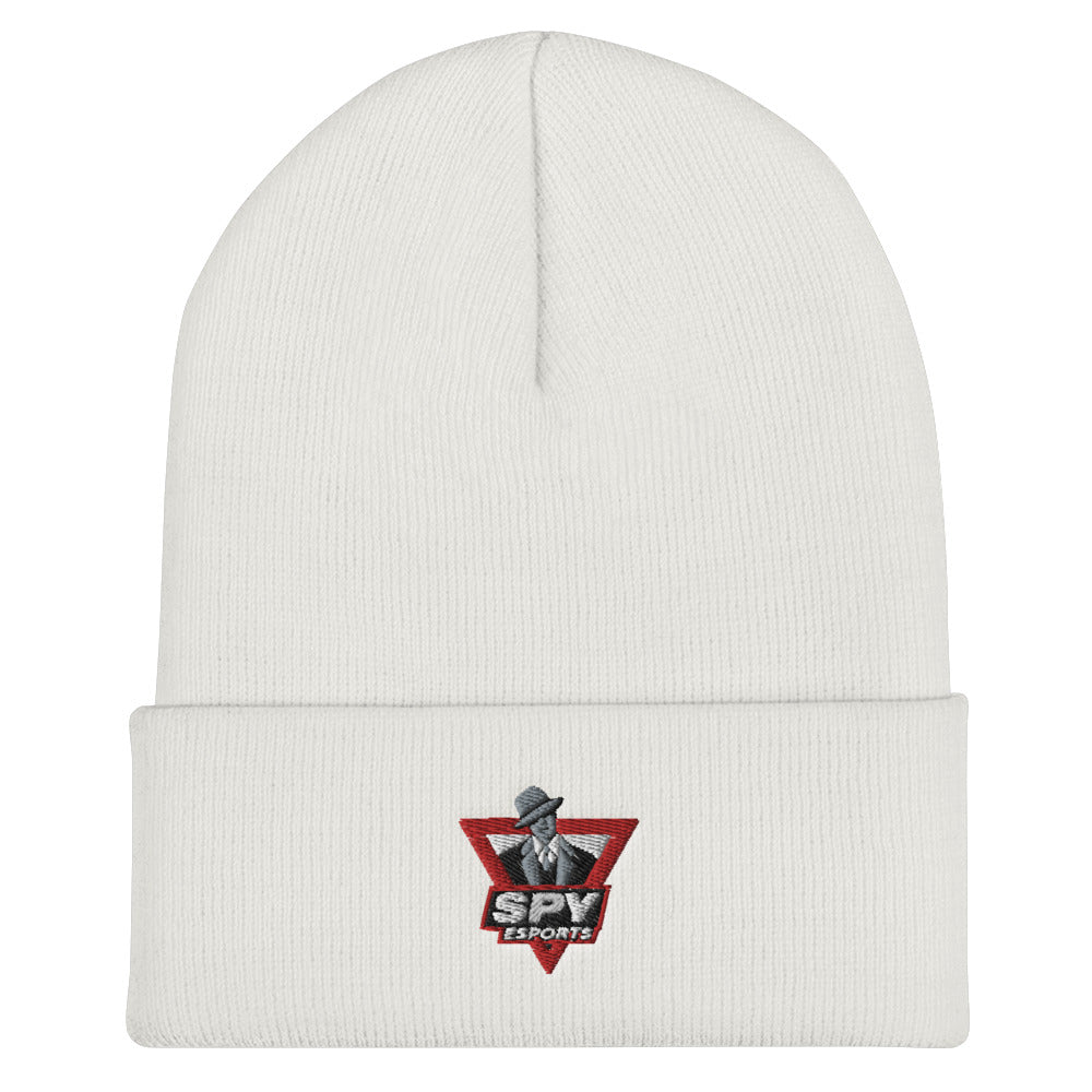 t-spy EMBROIDERED BEANIE
