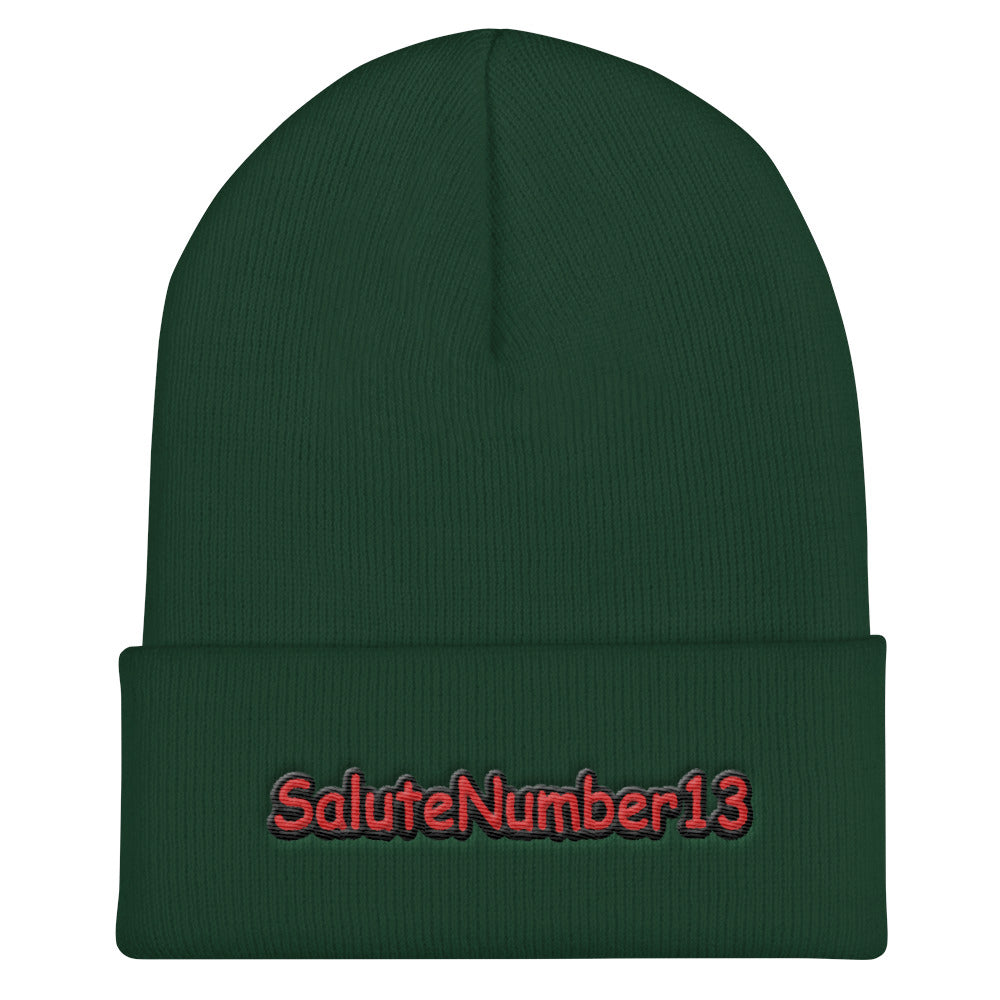 s-s13 EMBROIDERED BEANIE!!